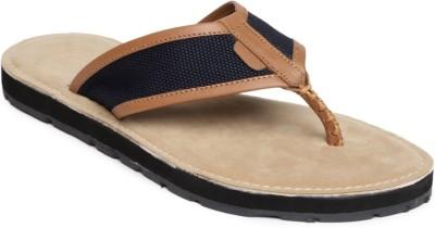 Harvard Men Brown, Navy Sandals