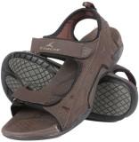 Tracer Men Sdl-16 Brown Sandals