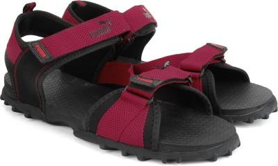 Puma Rio Men Black, Maroon Sports Sandals
