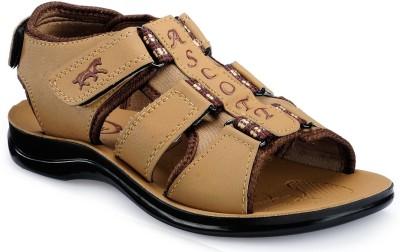 Ascott Men Brown Sandals