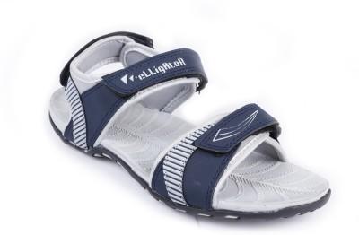 Elligator Women Blue Flats