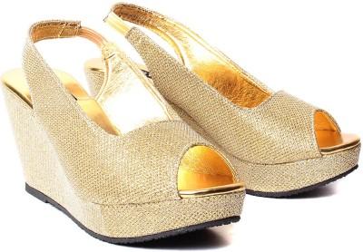 Ruby HS-001 Decent Women Gold Wedges