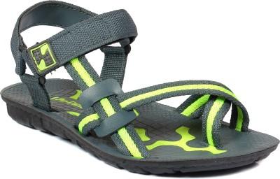 SCATCHITE Men Green, Grey Sandals