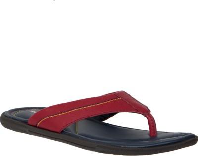Randier Men Tan, Brown Sandals