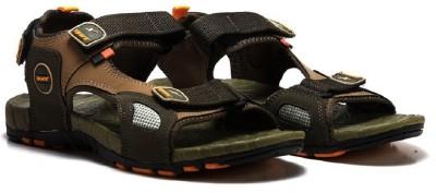 Sparx Men Brown, Olive Sandals