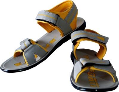 Triqer Men Multicolor Sandals