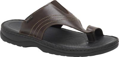 JCube Men Brown Sandals