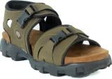 Shoegaro Men Green Sandals