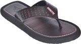 Domestiq Men black Sandals