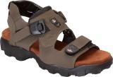 Shoegaro Men Mehendi Sandals