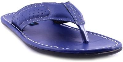 Knoos Men Blue Sandals