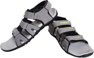 Elligator Men Grey Sandals