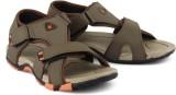 Corpus Men Brown Sandals