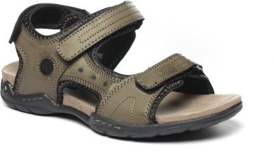 Pavers England Men Brown Sandals