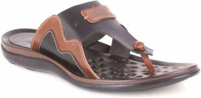 Brown Sugar Men Brown Sandals