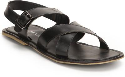 Turtle Men Black Sandals