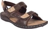 Invixo Men Brown Sandals
