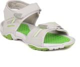 Scantia Men GREY Sandals