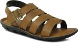 Get Glamr Men Tan Sandals