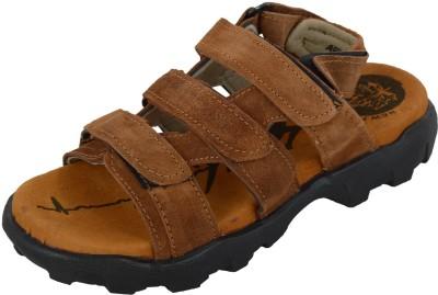 Arstoreindia Men Tan Sandals