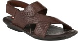Beluga Men Brown Sandals