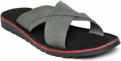 Harvard Men Grey Sandals