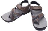 Fcoat Men Brown Sandals