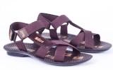 Slice Men Burgundy Sandals