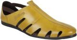 Guava Men 14,Gold Sandals