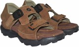Tim Land Men Light Brown Sandals