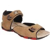 Shox Men Camel Sandals