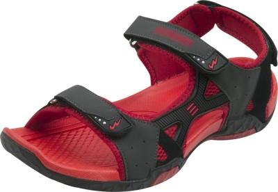 Campus Men Grey, Black, Red Sandals