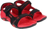 Campus Men Bk::Rst Sandals