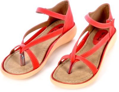Sir Michele Women Red, Beige Flats