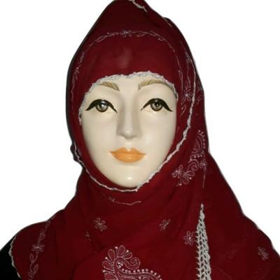 Sana creations Embroidered Chiffon Women's Stole