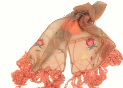 Amet And Ladoue Embroidered Organza Women's Scarf