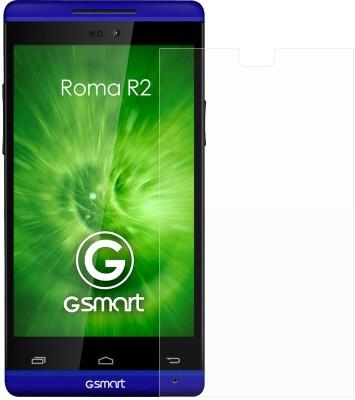Ostriva OST1101754 Screen Guard for Gigabyte Roma R2 Plus Edition