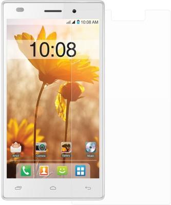 Ostriva OST1101794 Screen Guard for Intex Cloud Power Plus