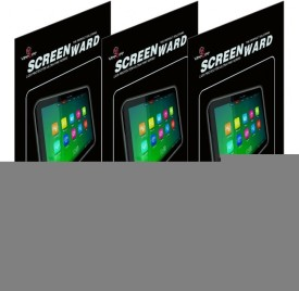 VeeGee Screen Guard for Apple iPad 2