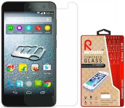 Raydenhy Tempered Glass Guard for Micromax Canvas Xpress 2 E313