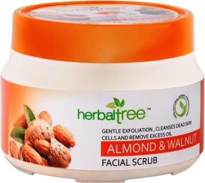 Herbal Tree Almond & Walnut  Scrub