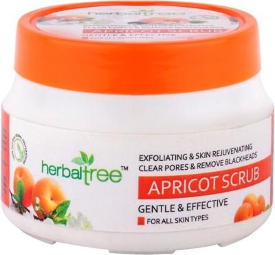 Herbal Tree Apricot  Scrub
