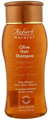 Anherb Combo of Olive Hair Shampoo (Pack of 2)
