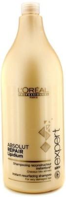L,Oreal Paris Absolut Repair Lipidum Instant Reconstructing Shampoo