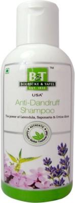 Boericke & Tafel Anti Dandruff Shampoo(Pack Of 2)
