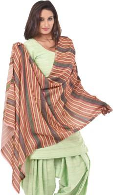 Weavers Villa Pashmina Woven Women's Shawl