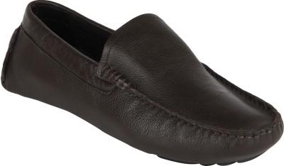 ESTD. 1977 4803_BROWN Loafers