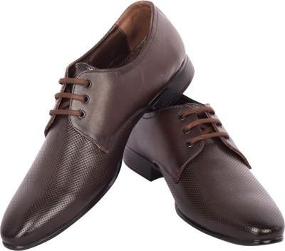 Moladz Rachel Lace Up Shoes