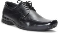 Bacca Bucci Black Lace Up Shoes best price on Flipkart @ Rs. 924