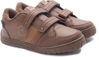 Airwalk Running Shoes